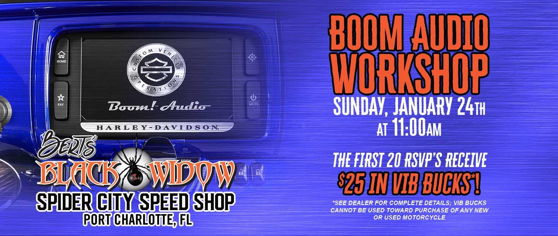 BERTS-HD_011821_BoomAudio-workshop-web