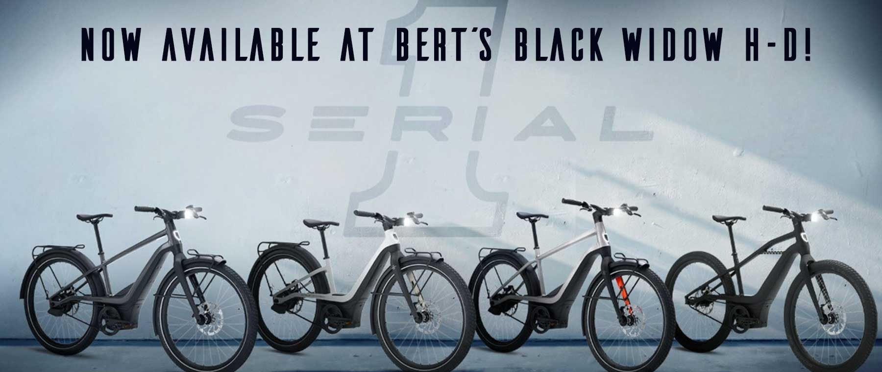 BERTS-HD_062921_Serial1-web