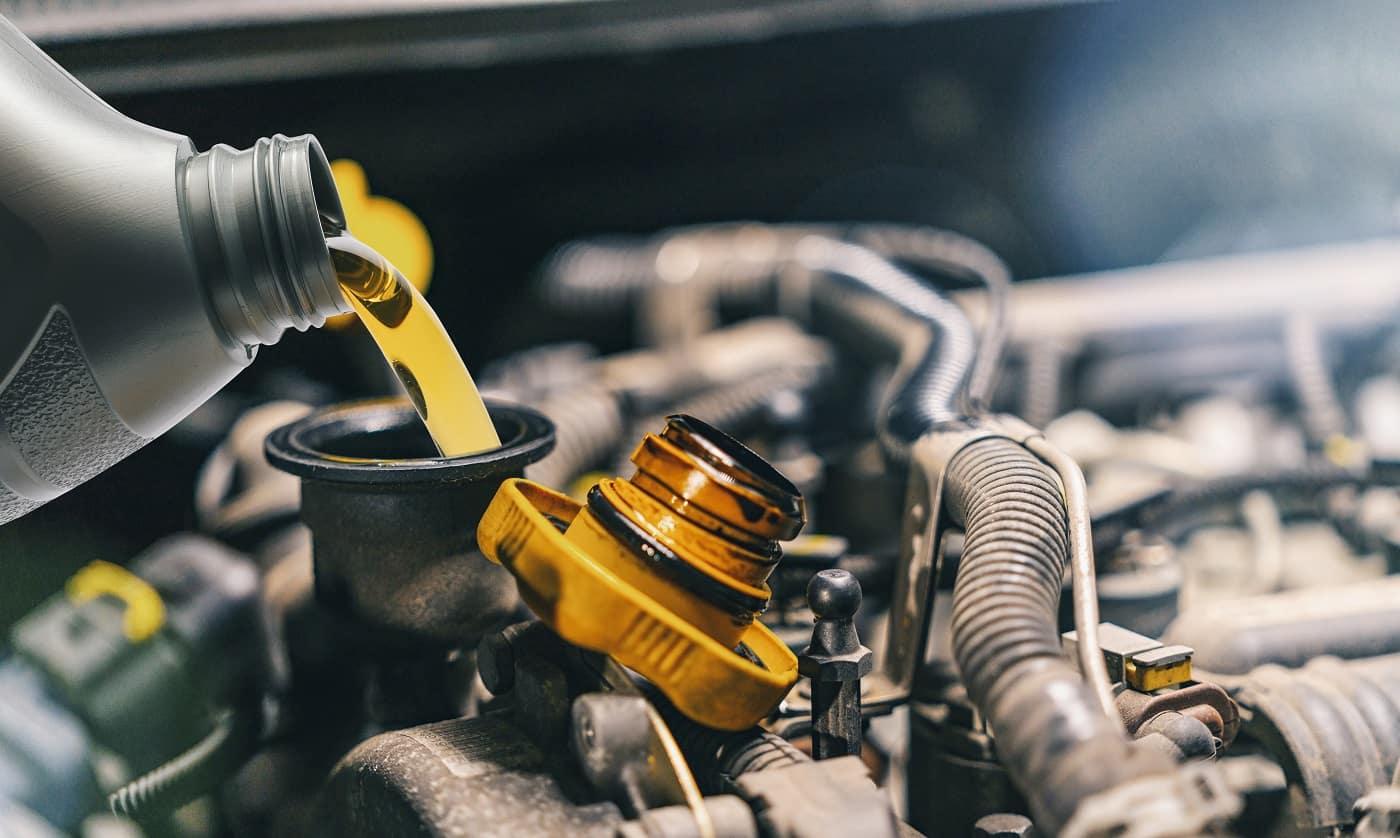 Lexus Oil Change