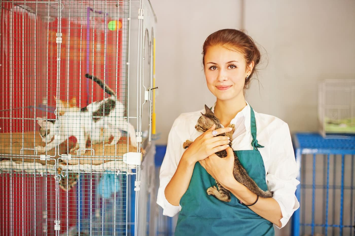 Humane Society Volunteer