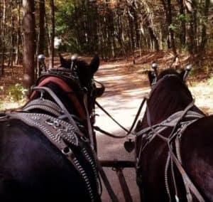 Community Spotlight: Krochmal Farms
